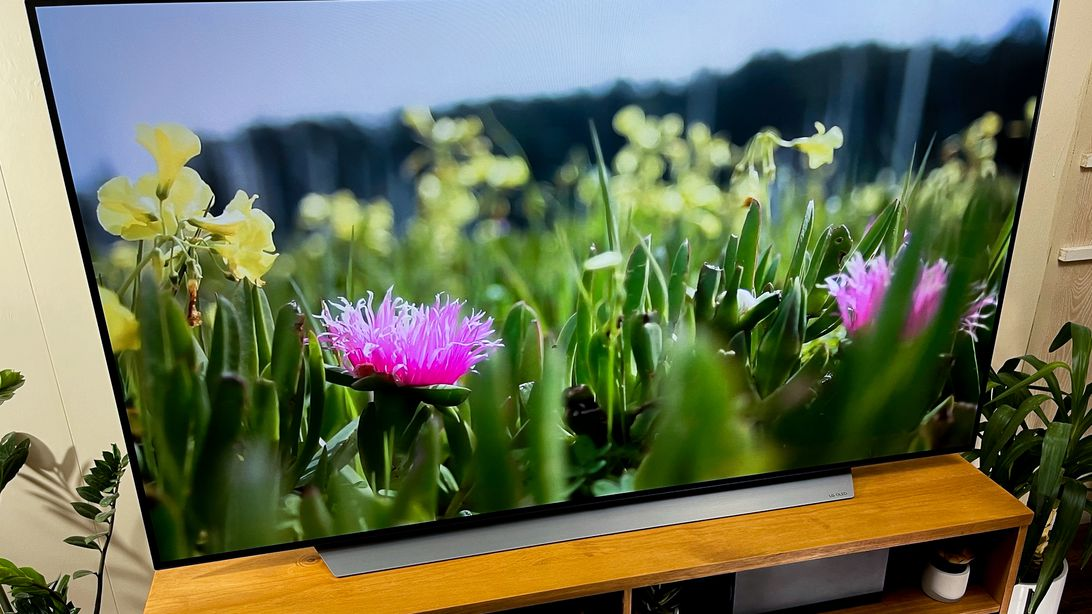 Best TVs to give for the holidays 2021